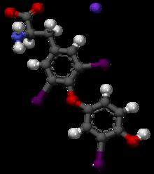Liothyronine 3D Molecule Structure
